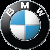 K1100 RS (BMW100) 1992-1999  Remschijf